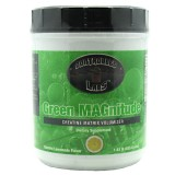 Controlled labs Green Magnitude - Electric Lemonade 80serv